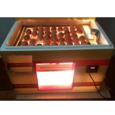 Hình ảnh Máy Ấp Trứng Gia Cầm Có Khay Đảo Chiều (80 trứng)