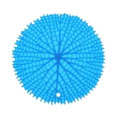 Hình ảnh Round Non-Slip Heat Resistant Mat Placemat Pot Holder Silicone Table Pad(Blue) - intl