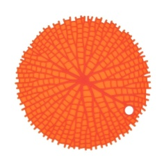 Hình ảnh Round Non-Slip Heat Resistant Mat Placemat Pot Holder Silicone Table Pad(Orange) - intl