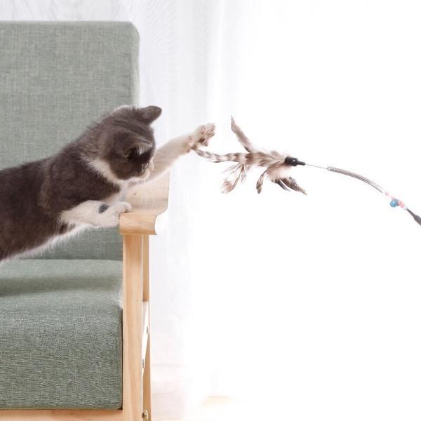 Đồ chơi cần câu mèo có gắn lông vũ và chuông đồ chơi huấn luyện mèo