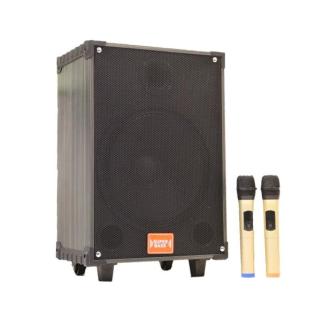 [HCM]Loa kéo di động Super Bass LT-912 thumbnail