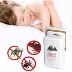 Hình ảnh Thiết bị đuổi côn trùng Pest Reject (đuổi chuột,muỗi,gián)