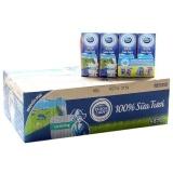 Ôn Tập Thung 48 Hộp Sữa Tươi Tiệt Trung Dutch Lady 100 Fresh Co Đường 170Ml Mới Nhất