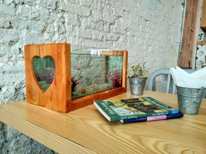 Bể cá kiểng khung gỗ hình trái tim 40cm