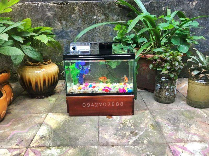 Bể cá mini + lọc (  25x13x15cm-Bể cá trang trí nhà cửa có viền gương siêu đẹp)