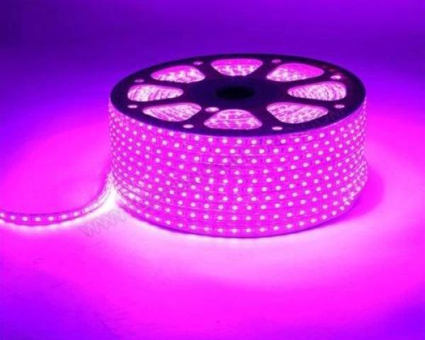 Bộ 10m đèn Led dây 5050/220V màu hồng + 1 đầu nối dây nguồn