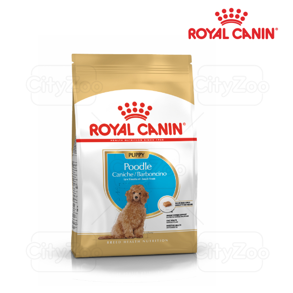 1.5kg ROYAL CANIN POODLE PUPPY