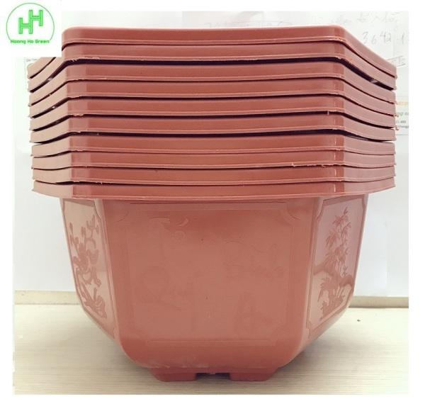 10 Chậu Nhựa Lục Giác Trồng Hoa, Cây Cảnh Bình Thuận Bonsai 280x180