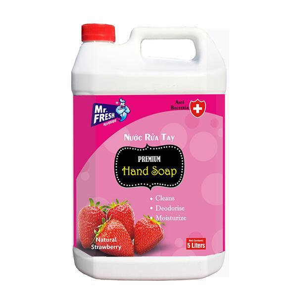 Nước rửa tay Premium Hand Soap Mr Fresh Hàn Quốc 5L Hương Dâu cao cấp