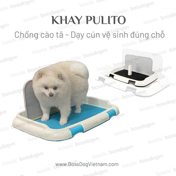 Khay vệ sinh cho chó Pulito, thiết kế có tường, chống cào tã phù hợp mọi dòng cún Poodle, Corgi, Pom,... | BossDog
