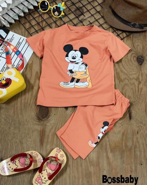 Quần áo trẻ em. bộ đồ bé gái mecky bóng chài,cho bé từ 6-28kg.BDBG21.