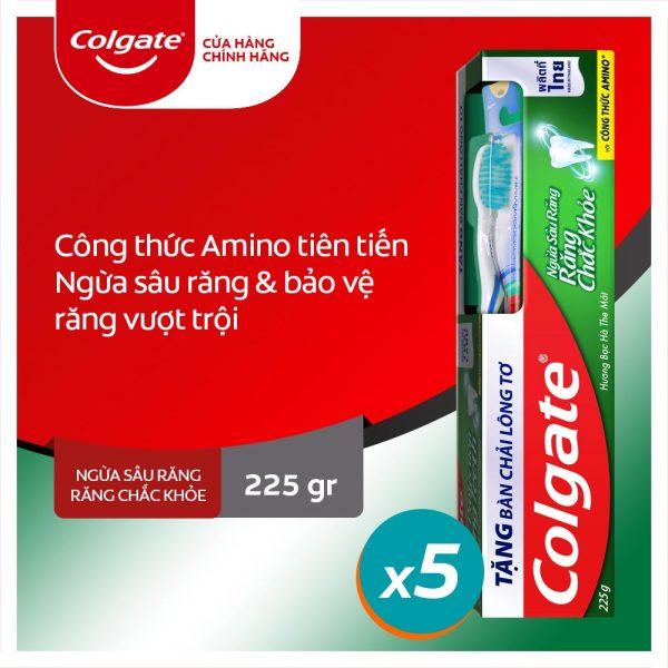 Bộ 5 kem đánh răng Colgate ngừa sâu răng răng chắc khỏe 225g/tuýp tặng bàn chải đánh răng lông tơ nhập khẩu Thái Lan giá rẻ