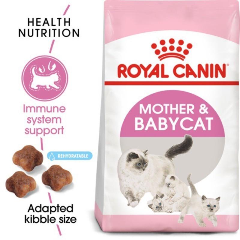 Royal cannin mother babycat cho mèo bầu và mèo con 4kg