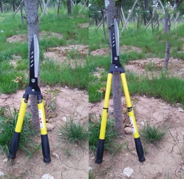 Kéo cắt hàng rào, tỉa cỏ lưỡi thép hàng chính hãng - tăng giảm chiều dài cán