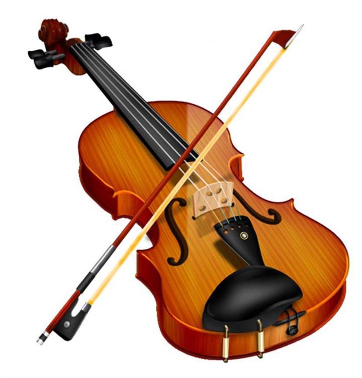 Đàn Violin Deviser V30 gỗ nguyên tấm ( full box)