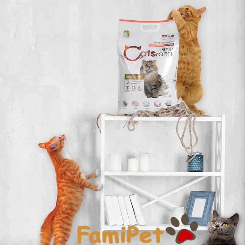 Thức ăn hạt cho mèo Catsrang bao 5kg