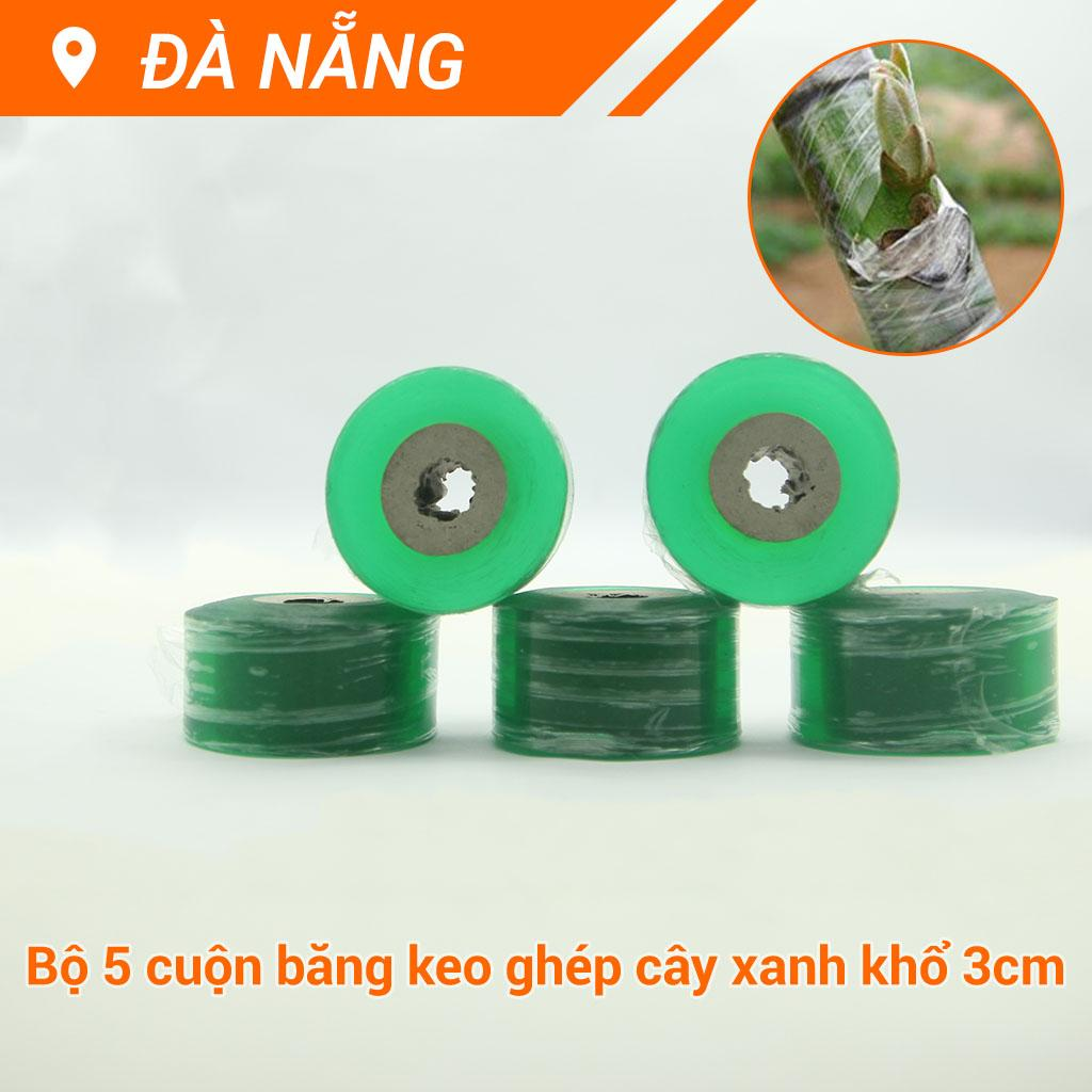 Bộ 10 cuộn băng keo ghép cây tự dính các cỡ 2-5cm