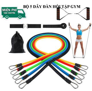 [Loại Xịn] Dây tập gym tại nhà - Mua Ngay Bộ 5 Dây Ngũ Sắc Tập Gym - Dây Cao Su Đàn Hồi Chất Lượng Cao , Tập Gym Tại Nhà, thumbnail