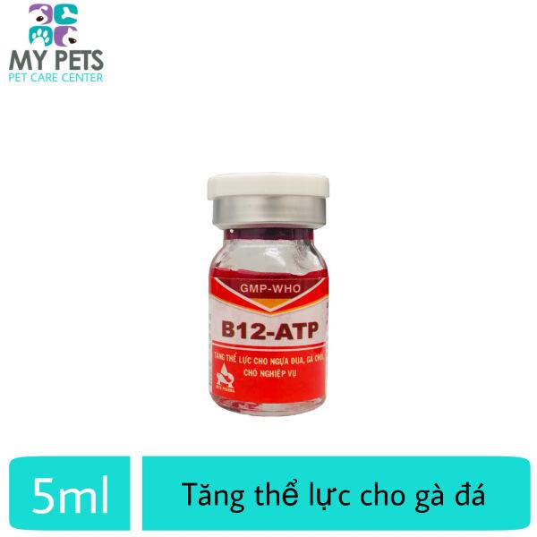 B12 ATP Thuốc nuôi tăng bo, tăng thể lực, hồi phục nhanh sau bệnh và sau mỗi trận chiến cho gà đá - lọ x 5ml