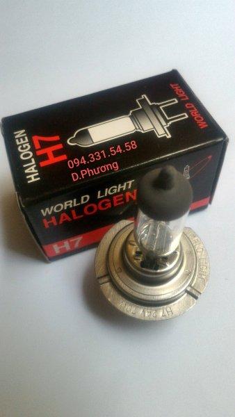 Bóng H7 12V 55W. Bóng đèn ô tô World Light. Chuyên các loại bóng đèn halogen giá sỉ