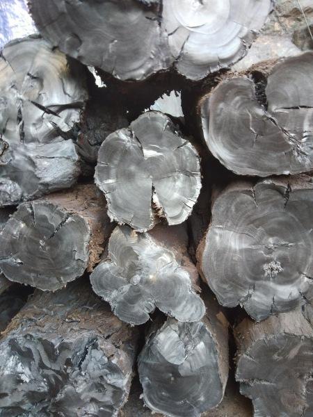 COMBO 10 KG Than nướng không khói, than sạch, than củi