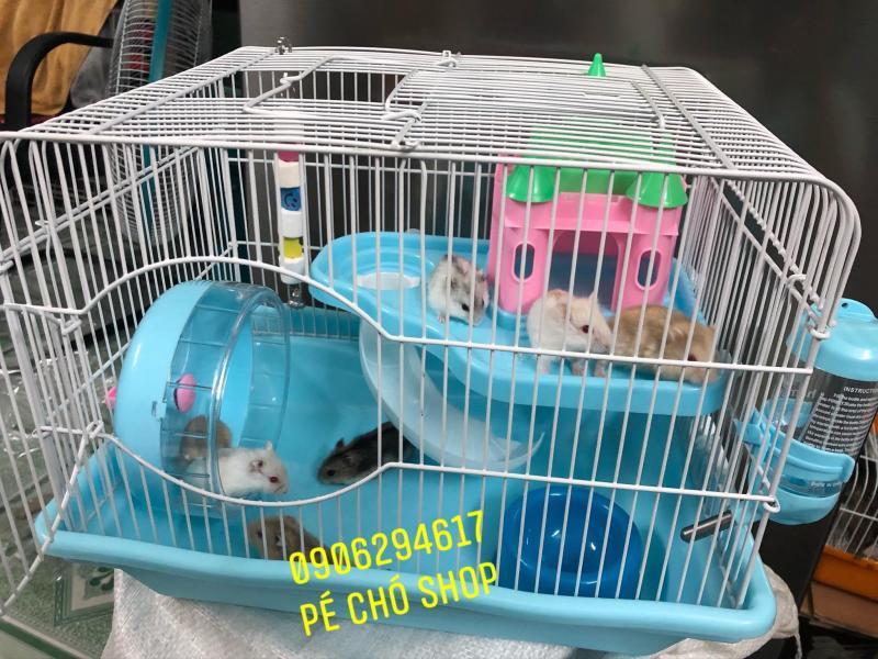 Lồng Lâu đài SUPPER cho hamster (d36r27c30)Tặng kèm Dây Mài Răng.