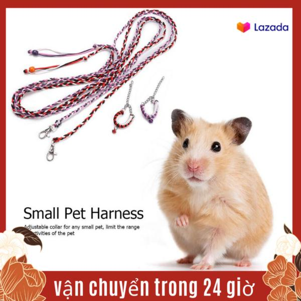 2 Cái Thú Cưng Nhỏ Con Sóc Chuột Đồng Guinea Lợn Dây Xích Ngoài Trời Huấn Luyện Đi Bộ Dây Dắt
