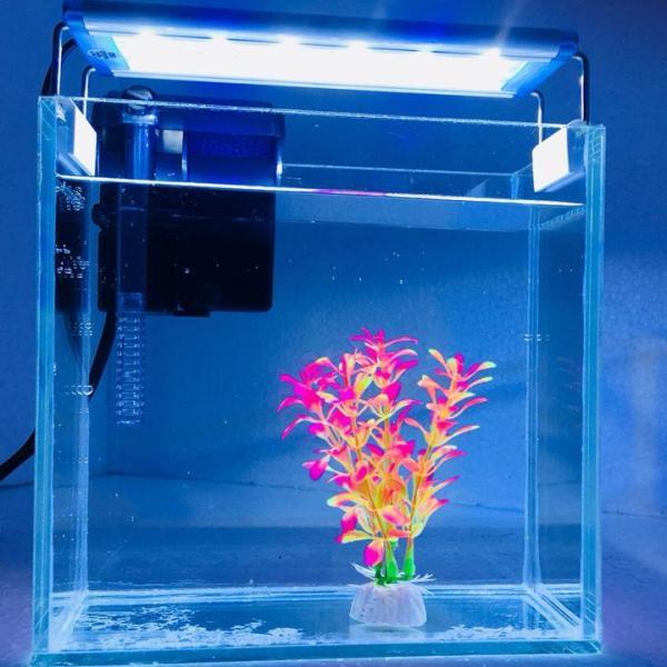 Bể cá mini để bàn Combo Hồ, lọc , đèn , phụ kiện