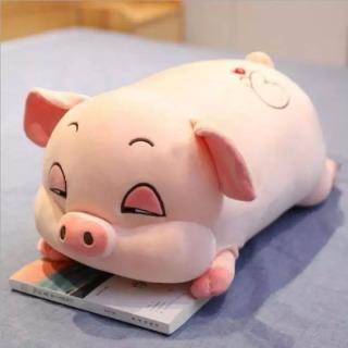 Raffer Gấu bông heo hồng vải nhung co giãn 4 chiều 40cm - Gấu bông hình con heo ngủ - Lợn bông xinh xắn đáng yêu RF417 thumbnail