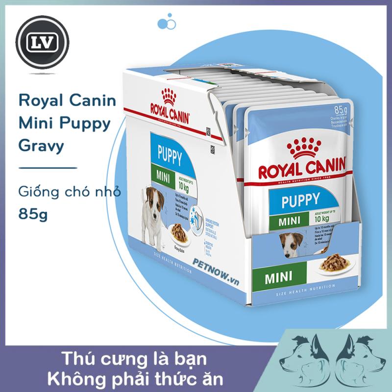 1 hộp 12 gói Thức ăn Pate cho dòng chó nhỏ dưới 10kg và dưới 10 tháng tuổi Royal Canin Mini Puppy 85g