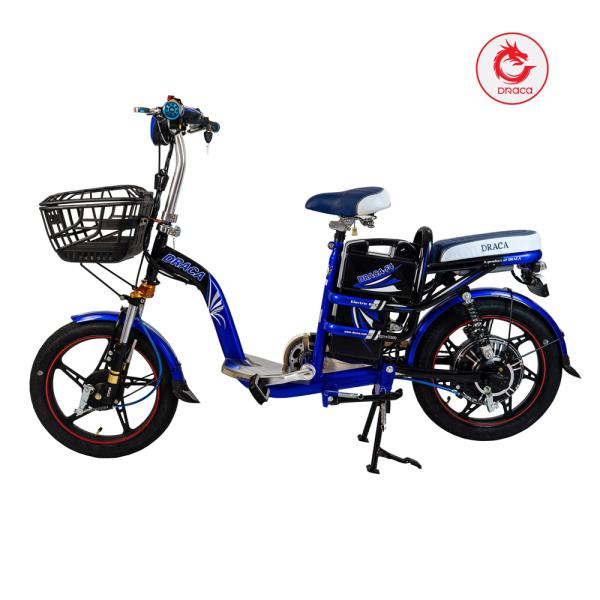 Mua Xe đạp điện Draca F4 - Nam Long Draca