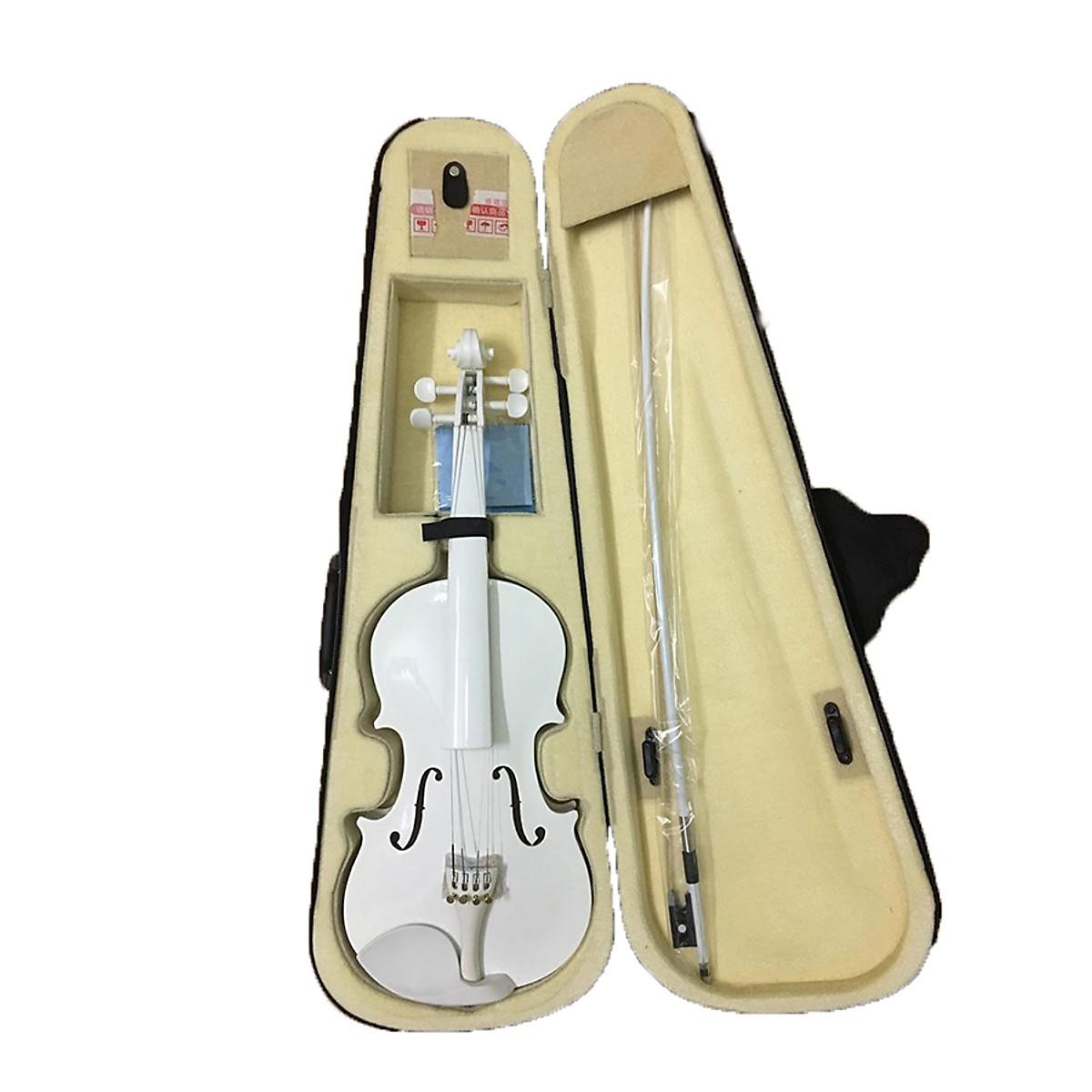 Đàn Violin ( Vĩ Cầm ) Cao Cấp Size 4/4 Gỗ Nhám (full Phụ Kiện ) - HÀNG CÓ SẴN Có Giá Ưu Đãi