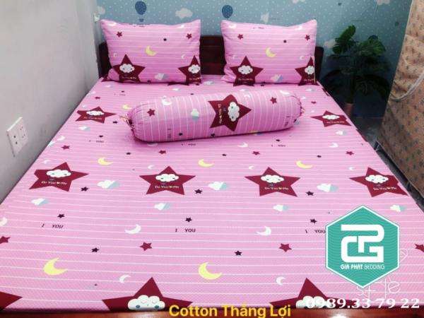 Bộ ga gối Thắng lợi cotton 100% chuẩn logo mẫu Ngôi Sao