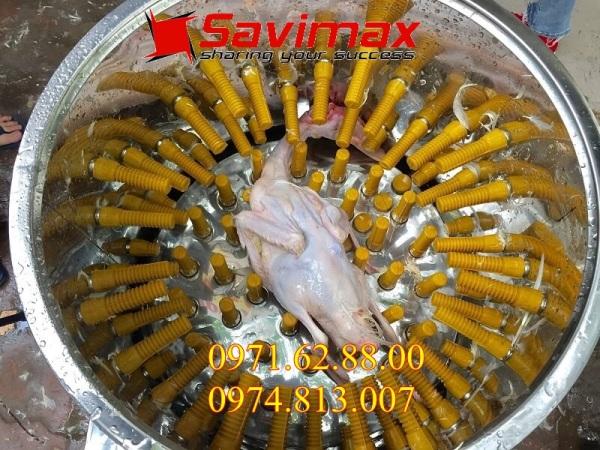 Máy vặt lông gà, máy máy vặt lông vịt đường kính lồng 50cm bảo hành 12 tháng