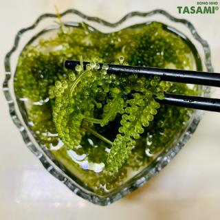[TẶNG Sốt Mè Rang] Rong Nho tách nước TASAMI gói 35g Mẹ Bầu dùng được Đạt chuẩn FDA và HACCP 5
