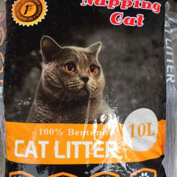 Cat ve sinh cho meo 10 l