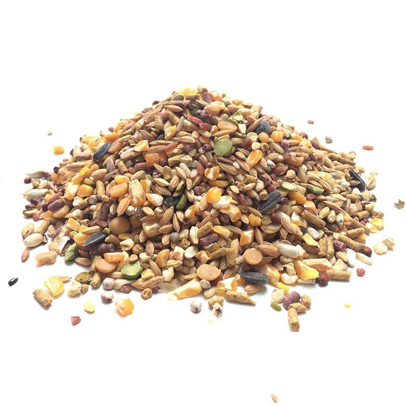 Ngũ cốc cho gia cầm, thức ăn ngũ cốc dinh dưỡng cho gà, bồ câu,...gói 0,5kg - rab.store