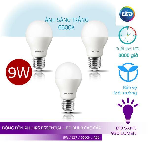 Combo 3 Bóng Philips LED Bulb Essential 9W E27 ( Ánh sáng trắng 6500K)