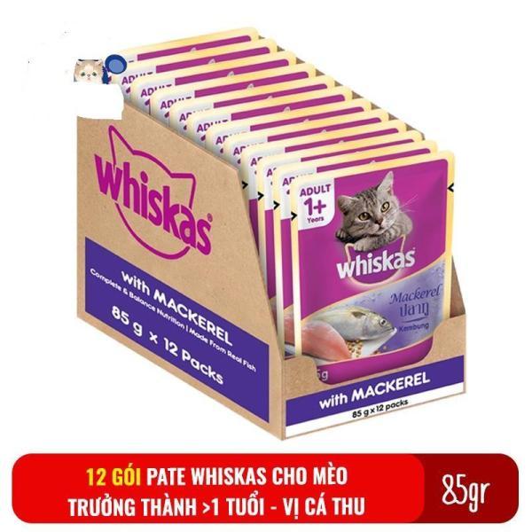 combo 12 gói bate whiskat cho mèo lớn (vị cá thu)