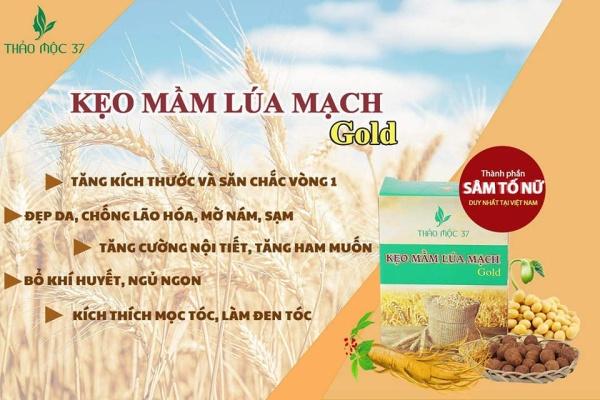 [KM Giá Sốc 3 ngày+Freeship+ Tặng quà]  Combo 10h Kẹo nở ngực ( kẹo mầm lúa mạch) TM37 tăng size ngực đẫy đà căng mọng tự nhiên (Chính hãng)
