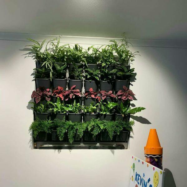 Combo 36 chậu và khung trồng cây trên tường