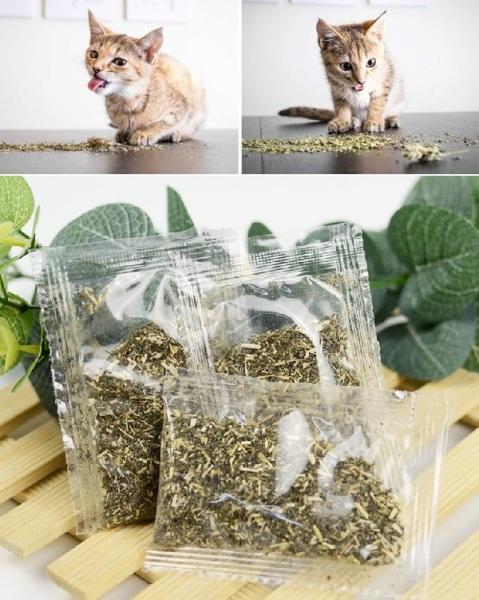 HN- (gói nhỏ 2gr) Cỏ mèo ngửi Catnip cỏ bạc hà cho mèo ngửi là phê Chống búi lông tắc ruột trên mèo