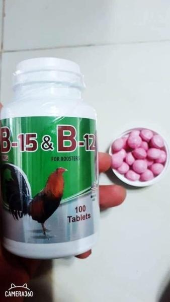 b15 & b12