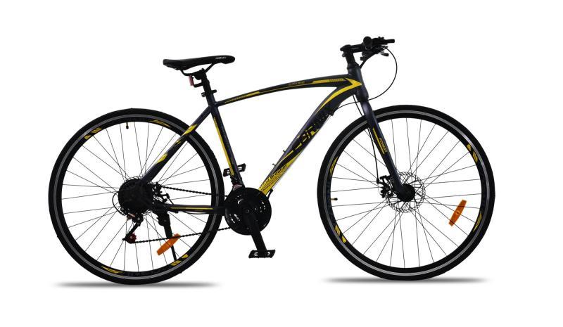 Phân phối Xe đạp thể thao Fornix FR303