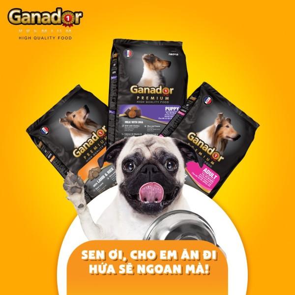 Thức ăn cho chó Ganador túi 400 gram