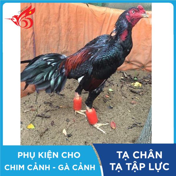 Tạ chân tập thể lực cho gà chọi, gà đá chất liệu cao su nặng 150g giúp săn chắc cơ bắp, chân cứng cáp, đá khỏe (1 đôi)