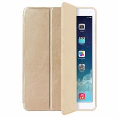 Bán Bao Da Ipad Air 2 Oucase Series Of Fruit Frosted Tpu Case Rẻ