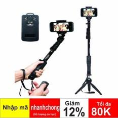 Hình ảnh Bộ đôi gậy chụp hình YT 1288 + Giá đỡ 3 chân YunTeng YT228
