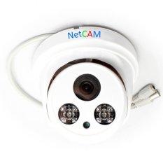 Bán Camera Giam Sat Netcam Nc 108Ahd 1 3 Trắng Trực Tuyến Trong Hồ Chí Minh