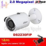 Chiết Khấu Camera Ip Dss Dahua 2 Megapixel Ds2230Fip Dahua Hồ Chí Minh
